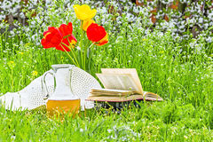bouquet-tulips-books-white-hat-carafe-juice-green-grass-spring-garden-against-background-cherry-53447938