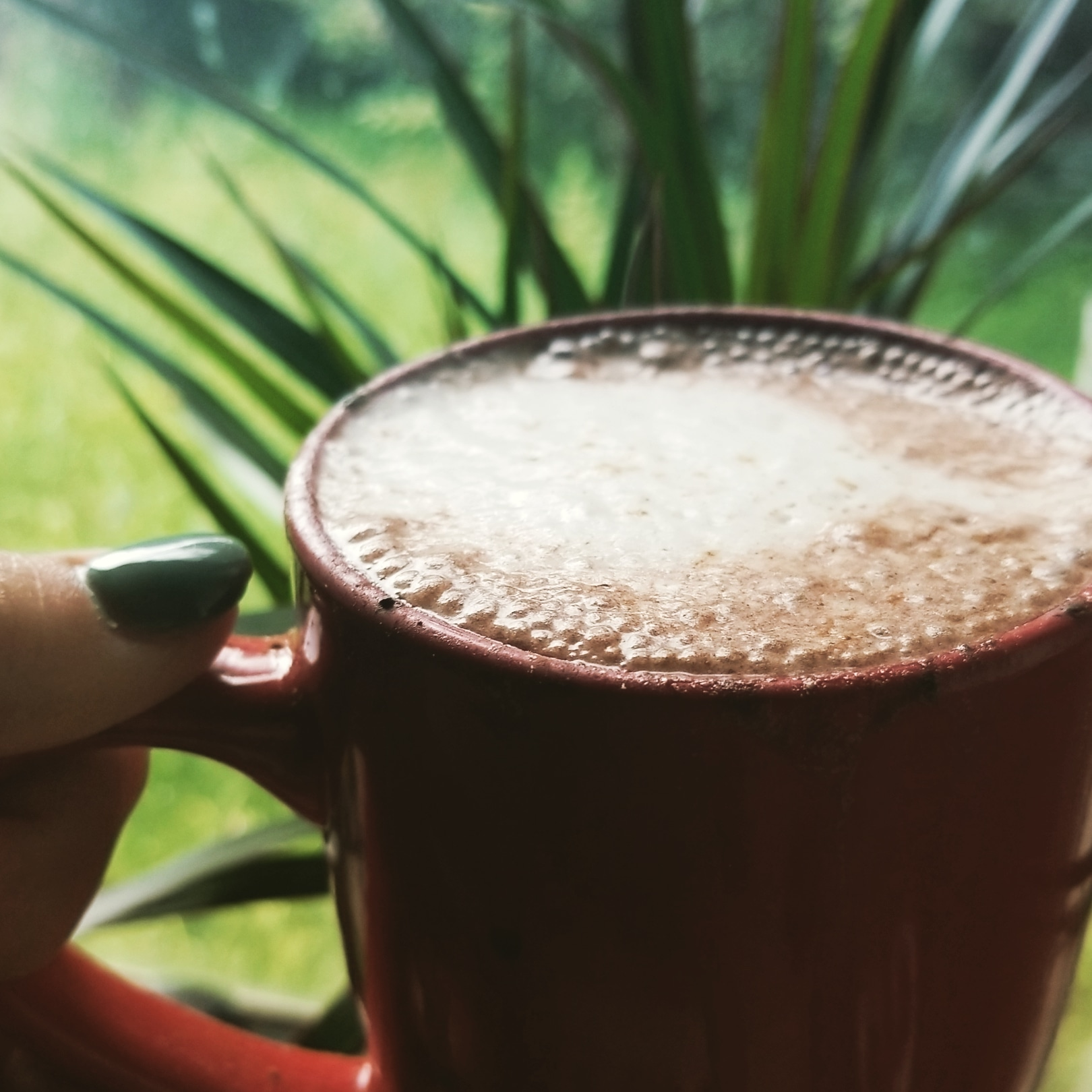 Wake up Wednesday: Cocoaccinno