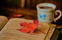 Leaves-Books-Coffee